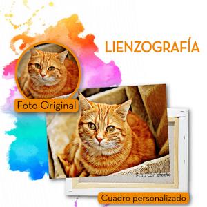Lienzos mascotas-02
