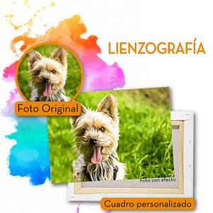 Lienzos mascotas-03